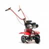 Kultivátor na benzín VARI KF XP140 sa hodí malým záhradkárom, ktorí chcú pred sadením plodín, pôdu poriadne prekypriť. Motor zariadenia je 4 - taktový. Objem motora predstavuje 140 cm3. Výhodou je bezpečnostný vypínač. Stroj sa veľmi jednoducho riadi, pretože má výškovo nastaviteľné riadidlá. Súčasťou je kužeľová spojka a slimákova prevodovka.