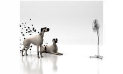 ventilátor - stojanový - stĺpový - ventilátory - malé sporebiče